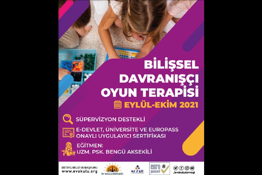 Bilişsel Davranışçı Oyun Terapisi Programı - Europass Ayrıcalıklı
